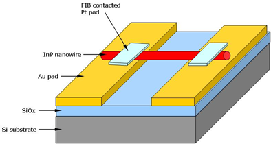 news article 9 1 figure 1 schematic of inp nanowire red bar contacted by fib pt on the top of au pads